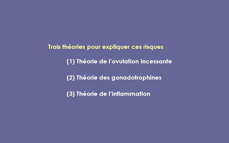 Trois théories pour expliquer ces risques