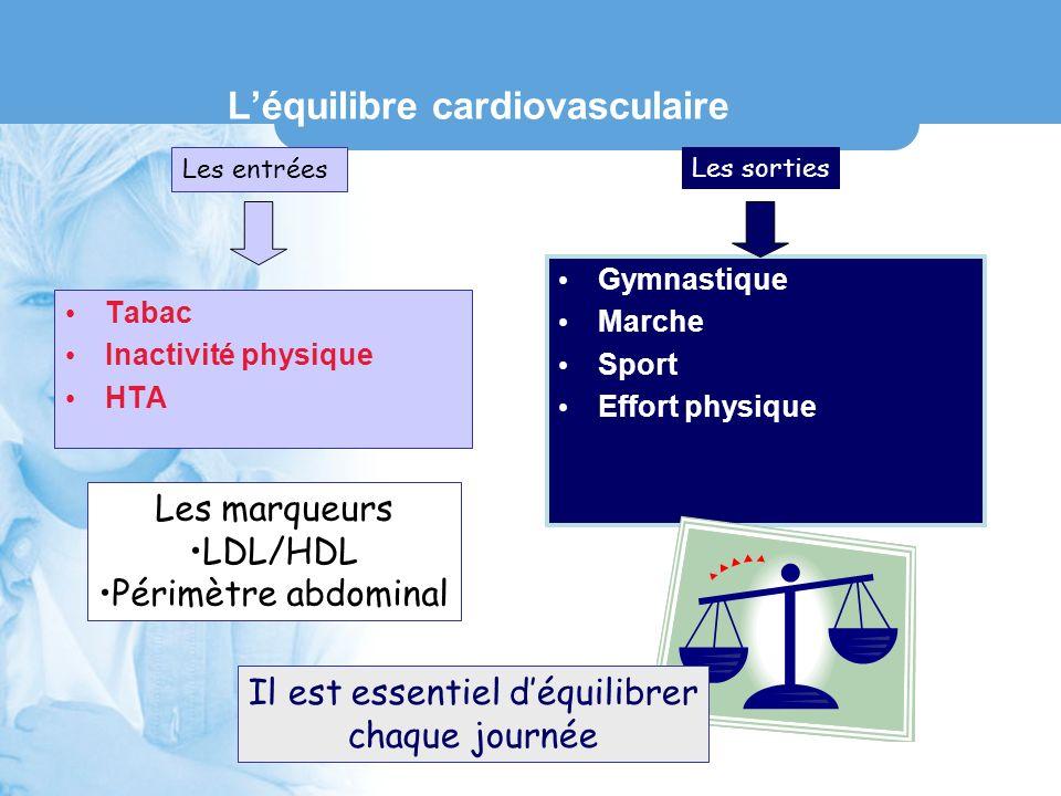 L'équilibre cardiovasculaire