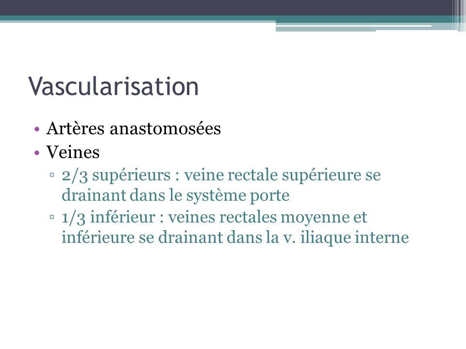 Vascularisation Artères anastomosées Veines
