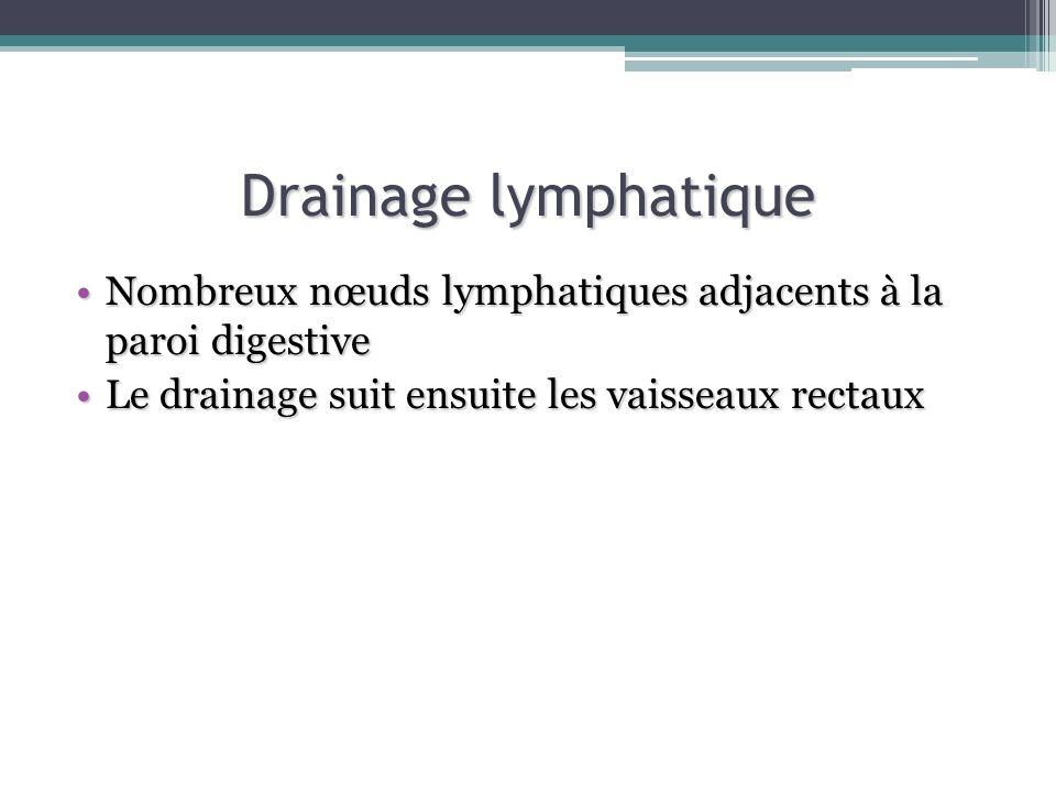 Drainage lymphatique Nombreux nœuds lymphatiques adjacents à la paroi digestive.