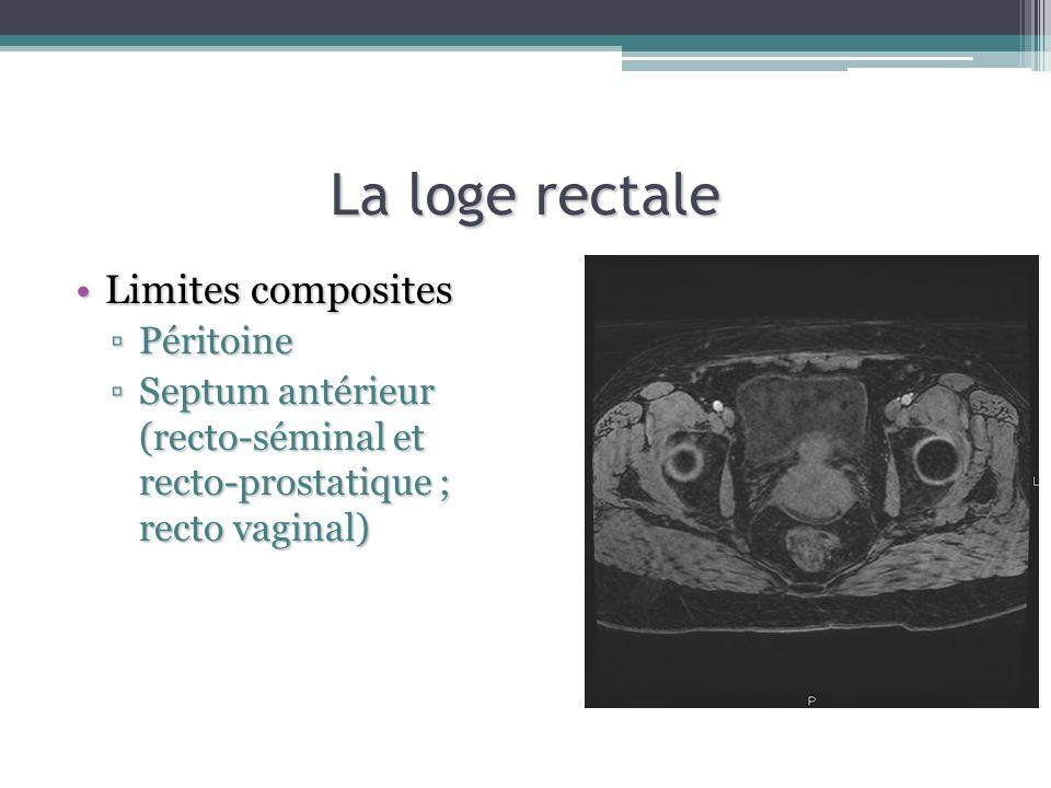 La loge rectale Limites composites Péritoine