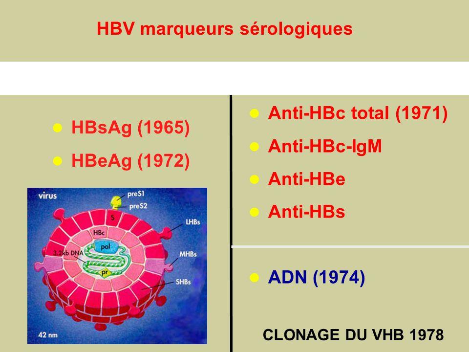 Antigènes Anticorps HBV marqueurs sérologiques Anti-HBc total (1971)