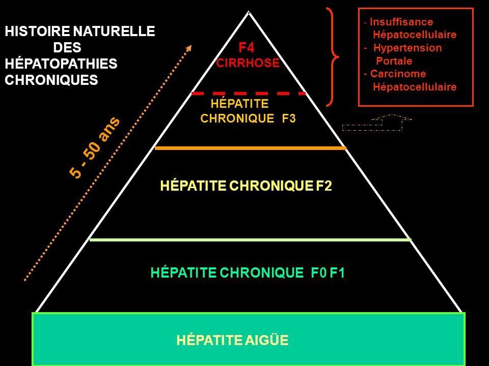 5 - 50 ans HÉPATITE CHRONIQUE F2 * * HISTOIRE NATURELLE DES