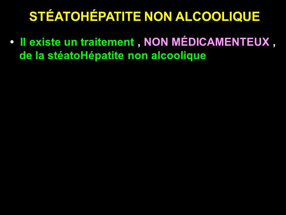 STÉATOHÉPATITE NON ALCOOLIQUE