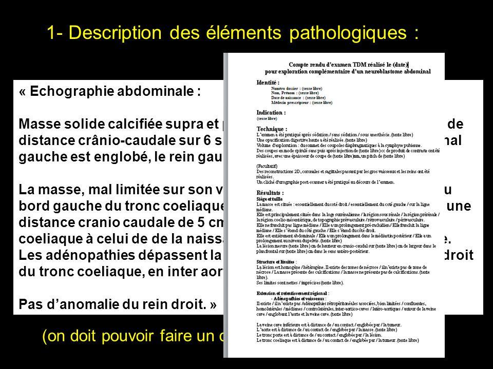 1- Description des éléments pathologiques :