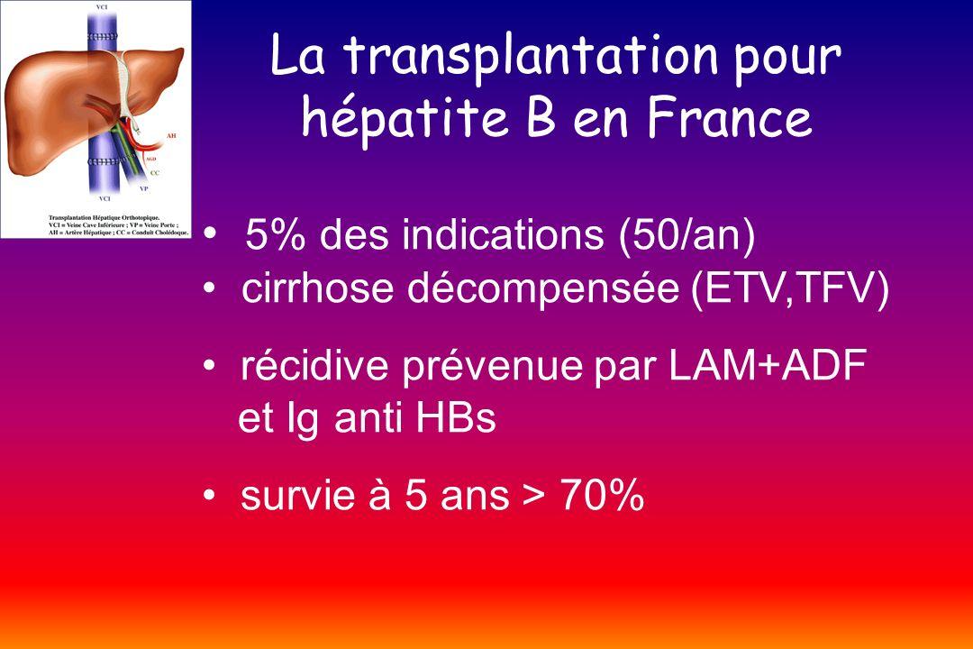 La transplantation pour hépatite B en France
