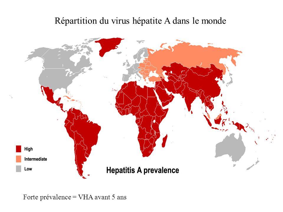 Répartition du virus hépatite A dans le monde
