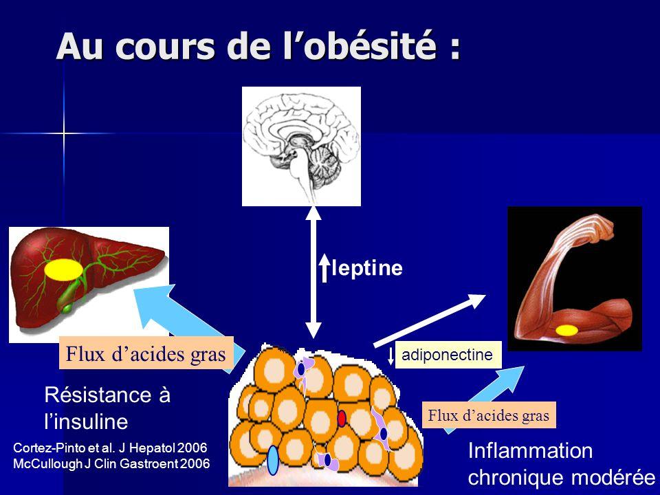 Au cours de l'obésité : leptine Flux d'acides gras