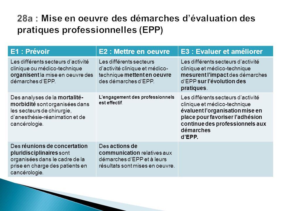 28a : Mise en oeuvre des démarches d'évaluation des pratiques professionnelles (EPP)