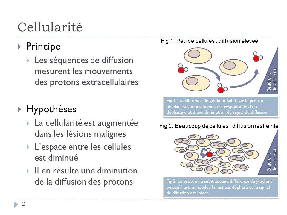 Cellularité Principe Hypothèses