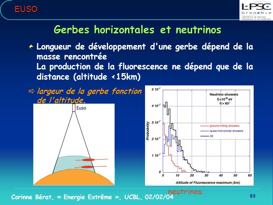 Gerbes horizontales et neutrinos