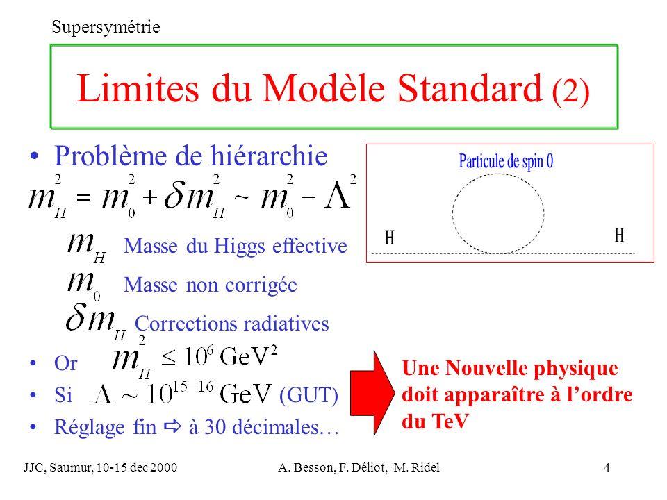 Limites du Modèle Standard (2)