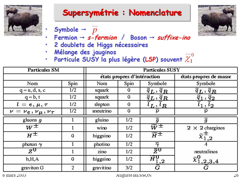 Supersymétrie : Nomenclature
