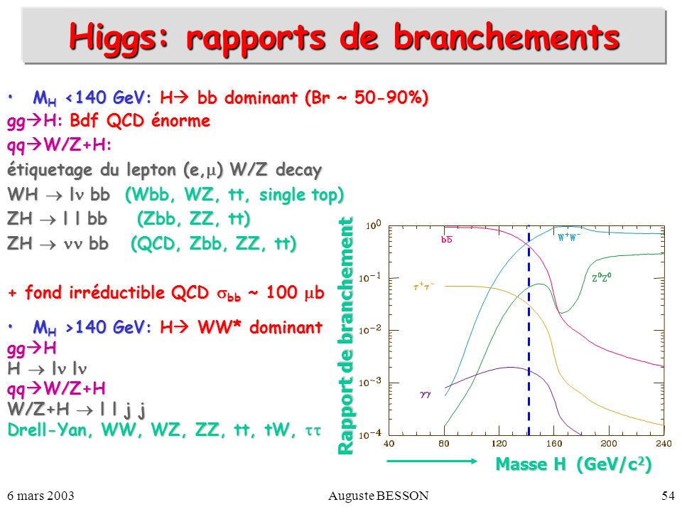 Higgs: rapports de branchements