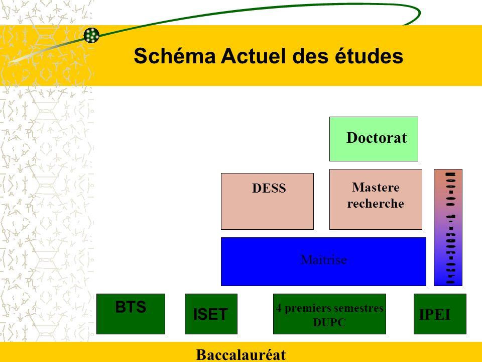 4 premiers semestres DUPC