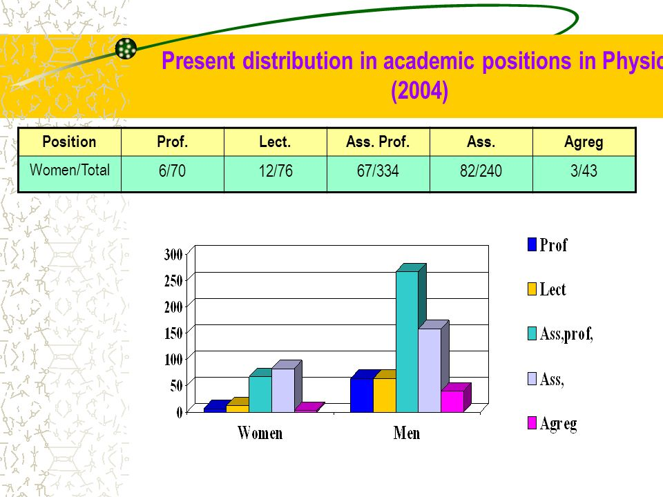 Present distribution in academic positions in Physics (2004)