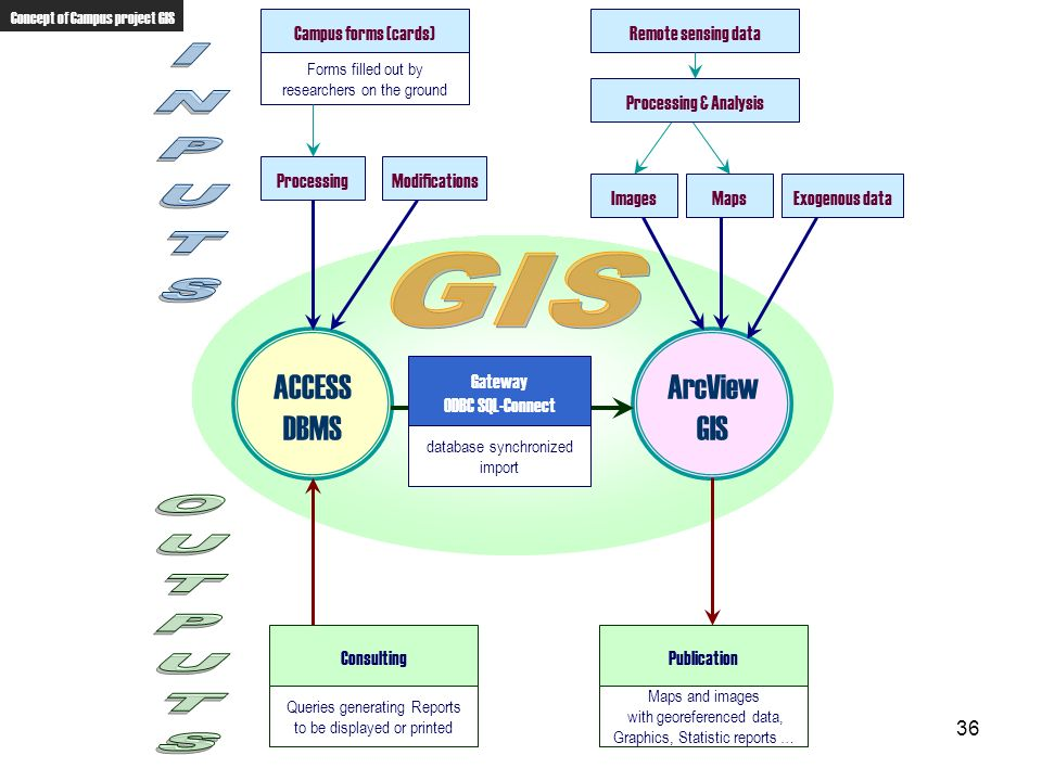 INPUTS GIS OUTPUTS ACCESS DBMS ArcView GIS Campus forms (cards)