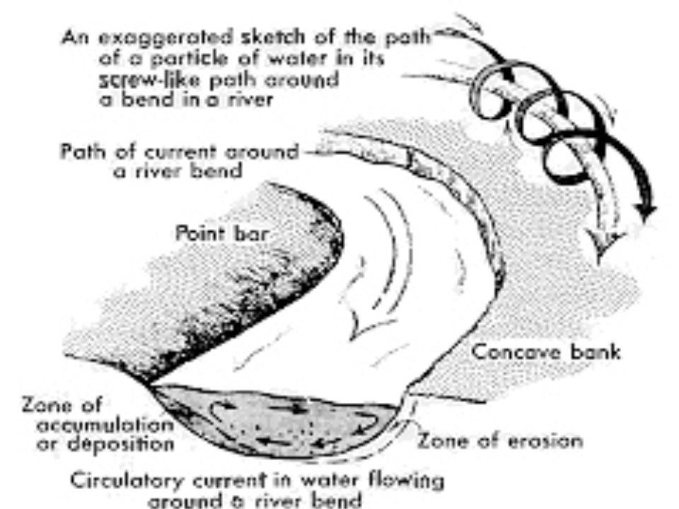 Figure 3 - Ecoulement à l'intérieur d'un méandre : à l'écoulement principal le long de la rivière se superpose un écoulement secondaire transverse aux rives : celui-ci est orienté vers l'extérieur du méandre près de la surface et en sens inverse près du fond.