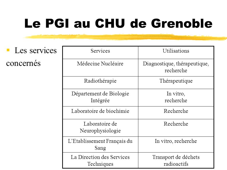 Le PGI au CHU de Grenoble