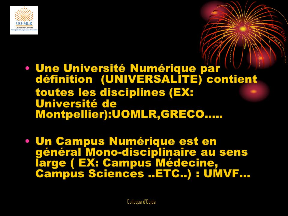 Une Université Numérique par définition (UNIVERSALITE) contient toutes les disciplines (EX: Université de Montpellier):UOMLR,GRECO…..