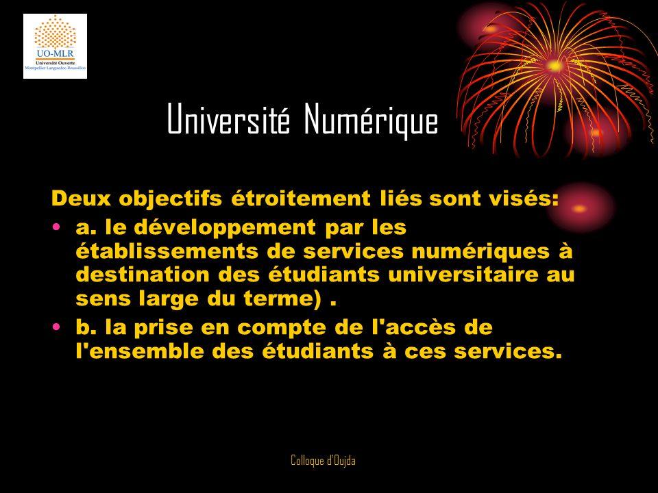 Université Numérique Deux objectifs étroitement liés sont visés: