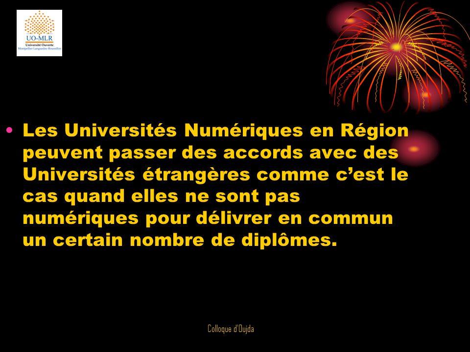Les Universités Numériques en Région peuvent passer des accords avec des Universités étrangères comme c'est le cas quand elles ne sont pas numériques pour délivrer en commun un certain nombre de diplômes.