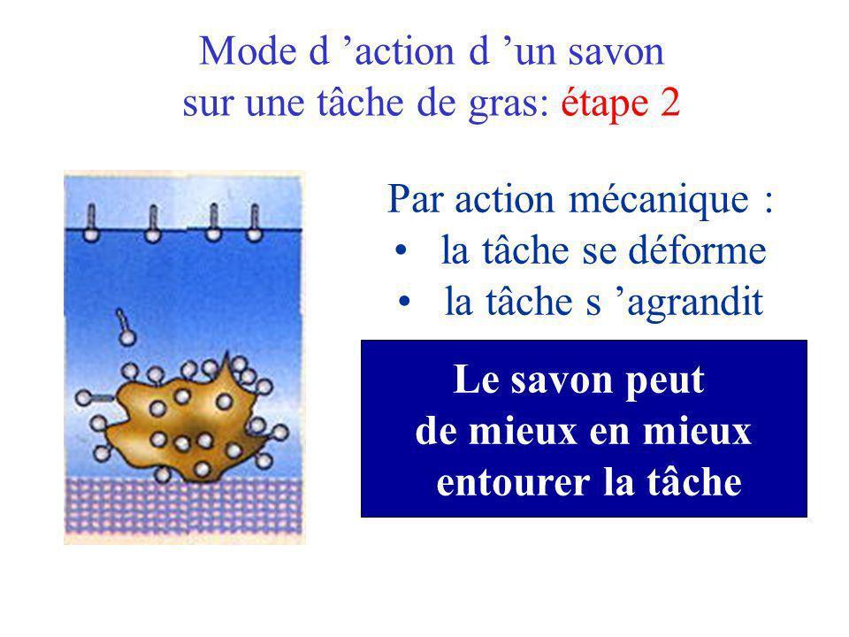 Mode d 'action d 'un savon sur une tâche de gras: étape 2