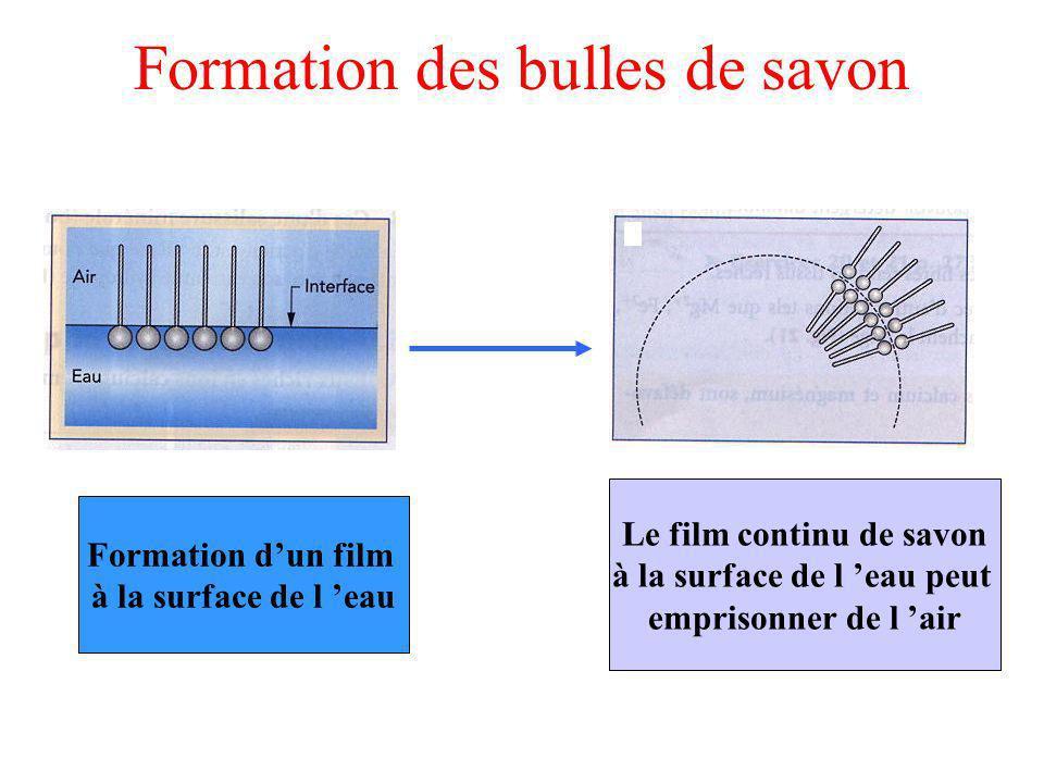 Formation des bulles de savon