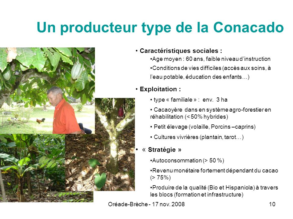 Un producteur type de la Conacado