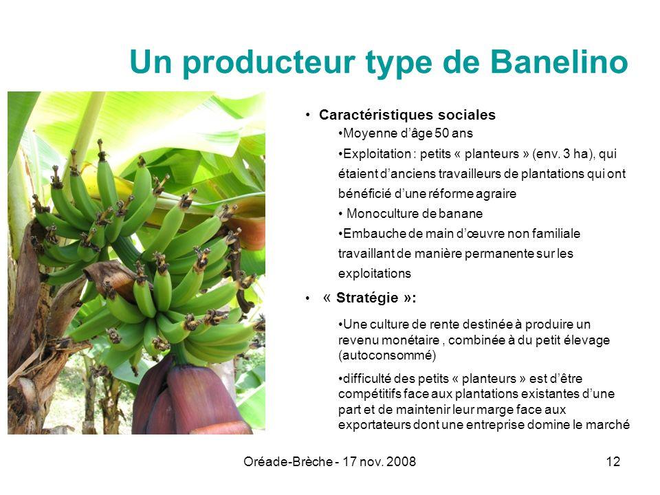 Un producteur type de Banelino