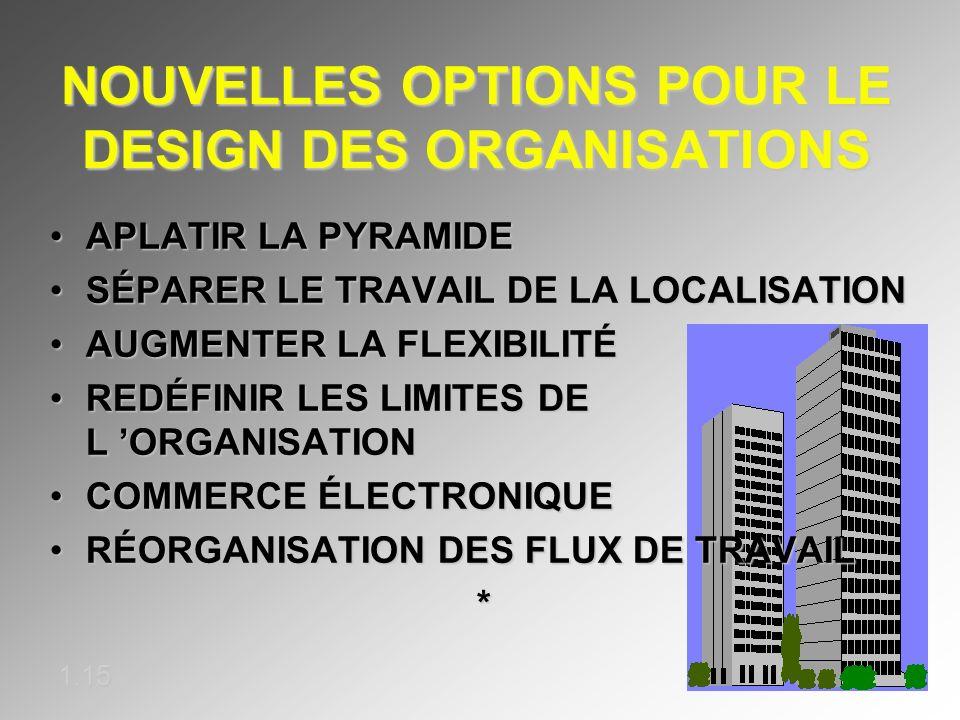 NOUVELLES OPTIONS POUR LE DESIGN DES ORGANISATIONS