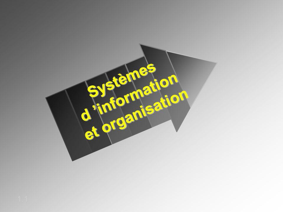 Systèmes d 'information et organisation