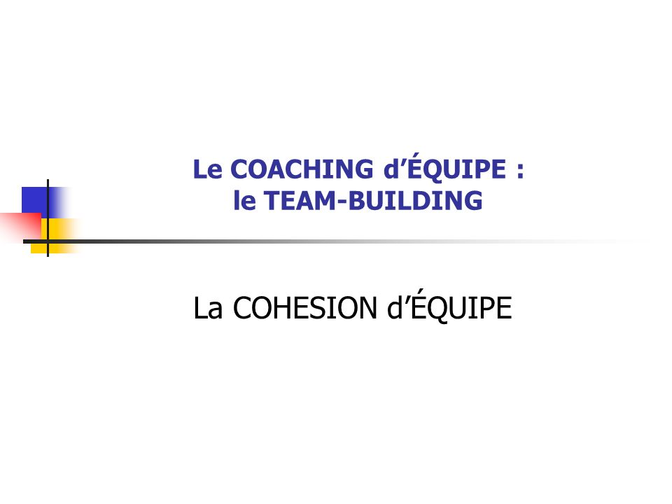 Le COACHING d'ÉQUIPE : le TEAM-BUILDING
