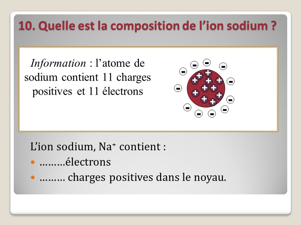 10. Quelle est la composition de l'ion sodium