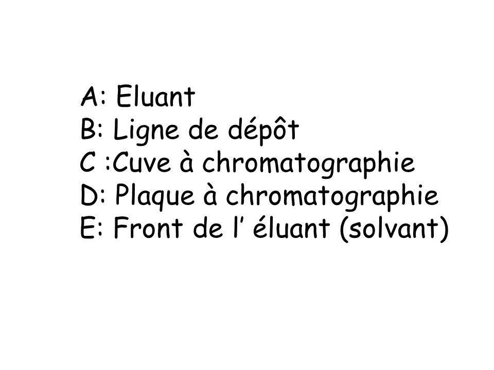 A: Eluant B: Ligne de dépôt. C :Cuve à chromatographie.