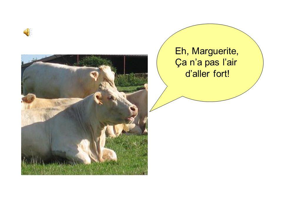 Eh, Marguerite, Ça n'a pas l'air d'aller fort!