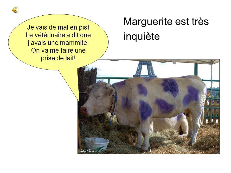 Marguerite est très inquiète Je vais de mal en pis!