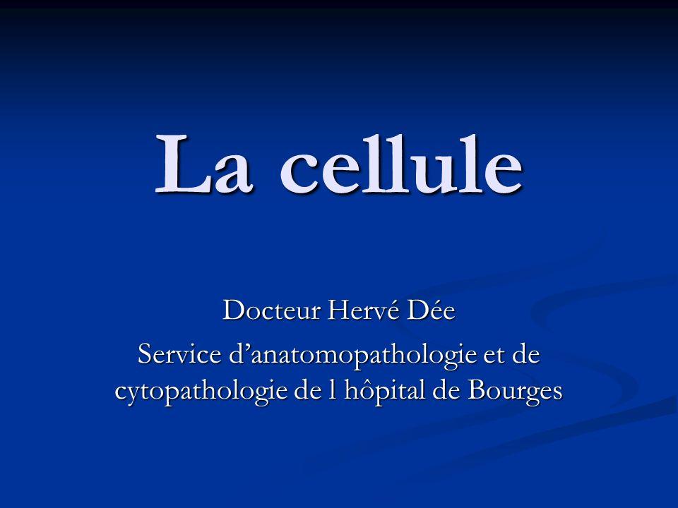 La cellule Docteur Hervé Dée