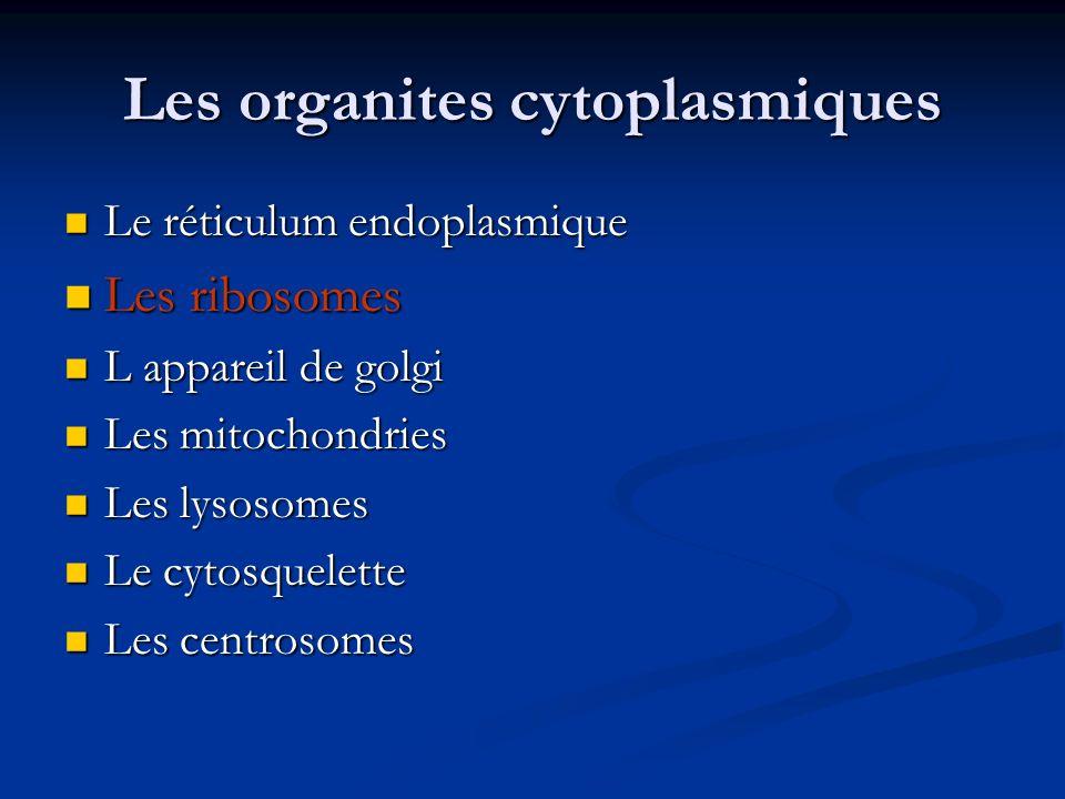 Les organites cytoplasmiques