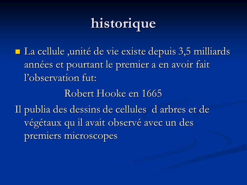 historique La cellule ,unité de vie existe depuis 3,5 milliards années et pourtant le premier a en avoir fait l'observation fut: