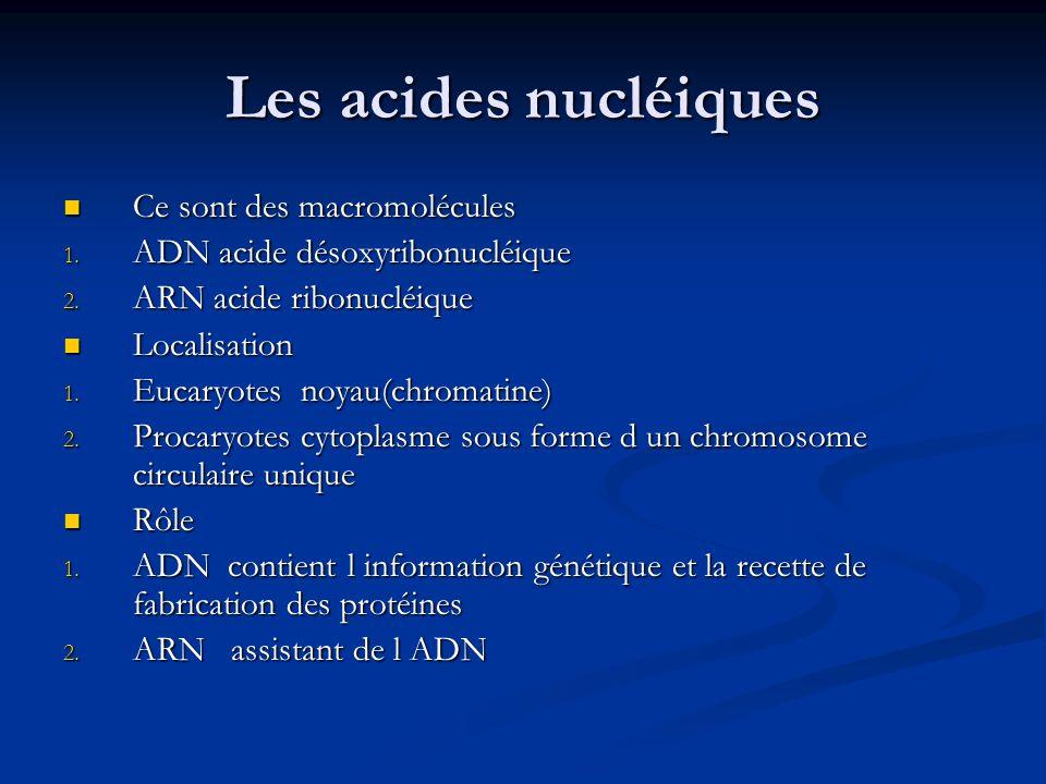 Les acides nucléiques Ce sont des macromolécules