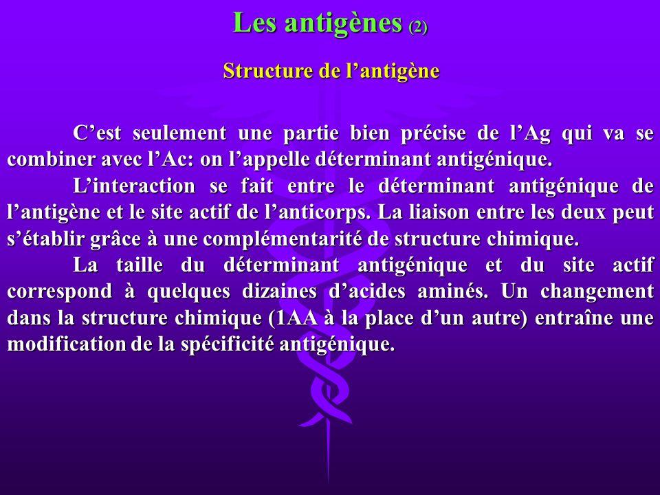 Structure de l'antigène