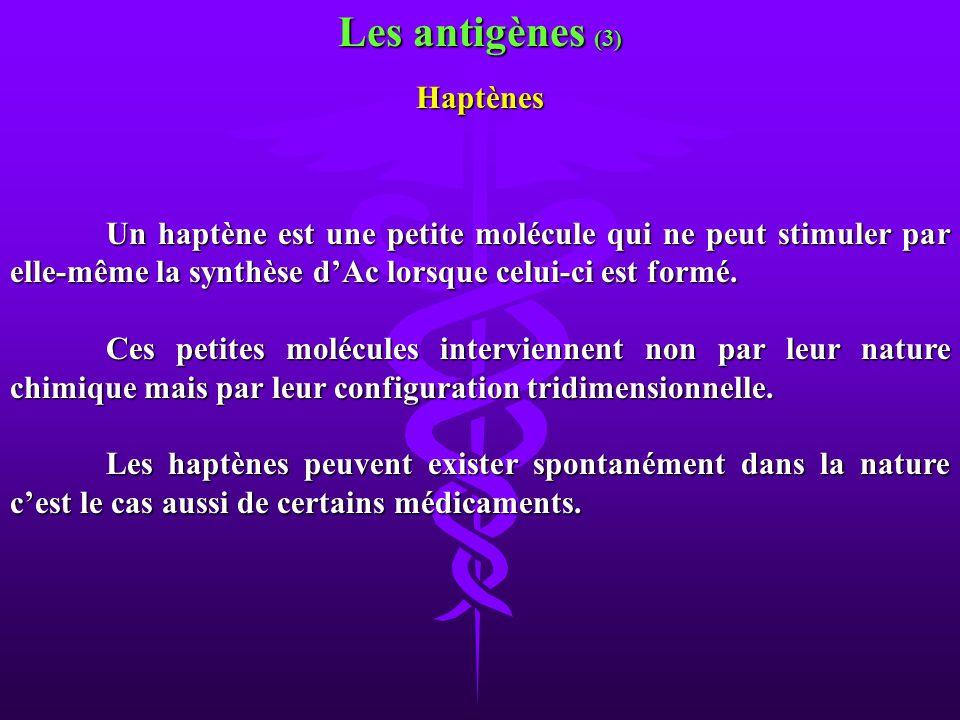 Les antigènes (3) Haptènes