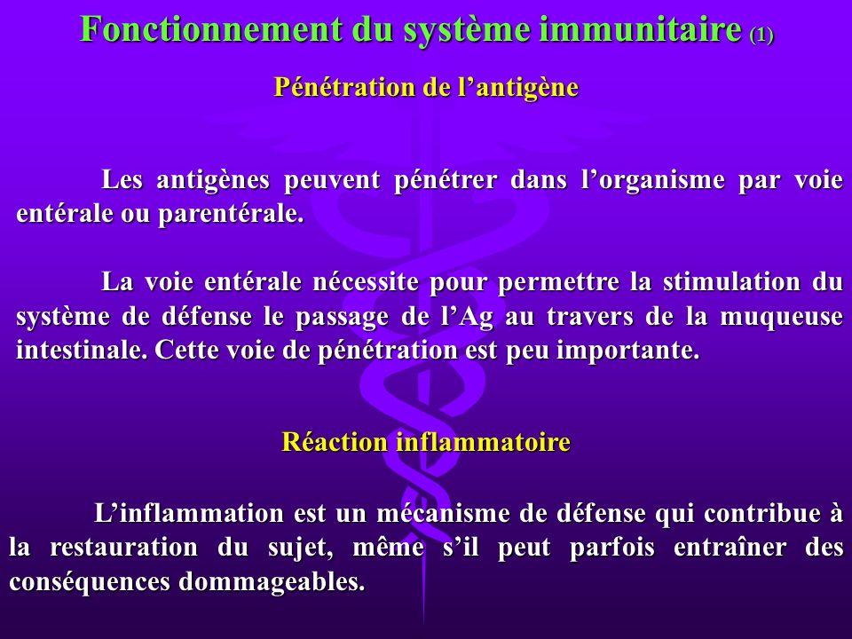Fonctionnement du système immunitaire (1)