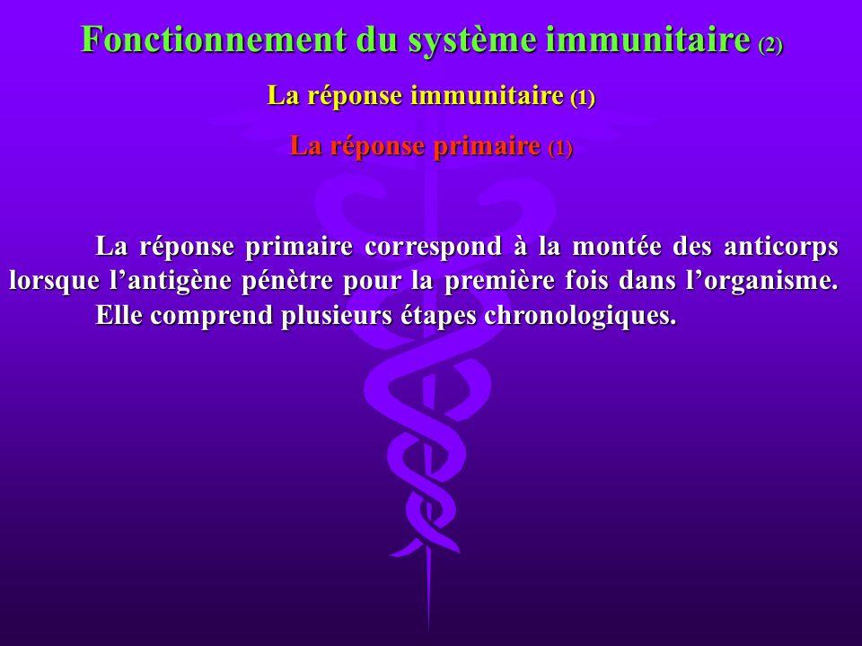 Fonctionnement du système immunitaire (2) La réponse immunitaire (1)