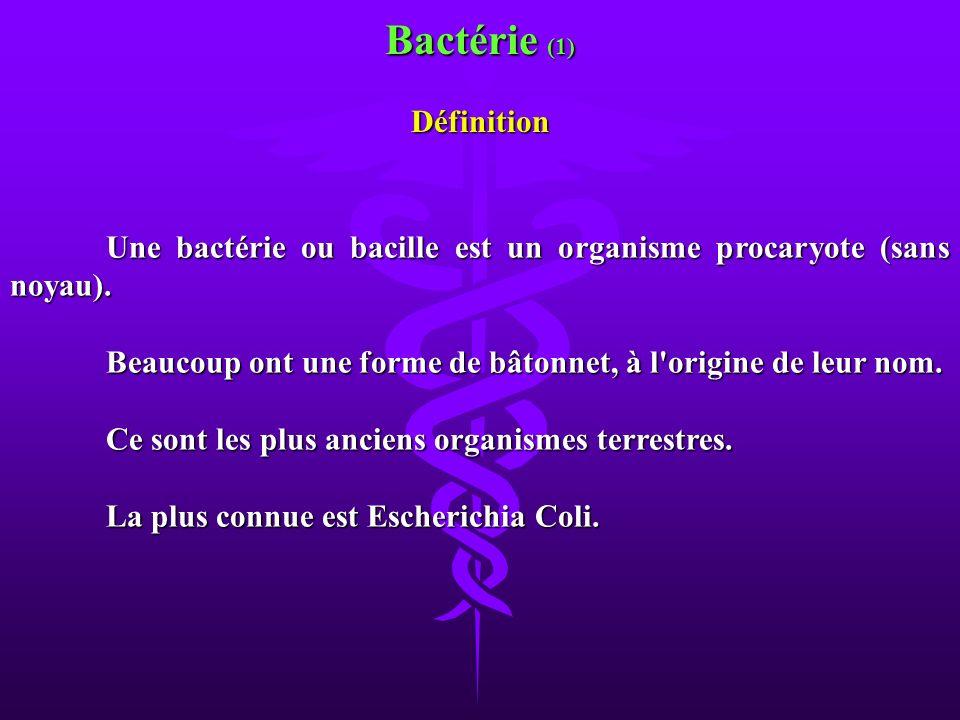 Bactérie (1) Définition