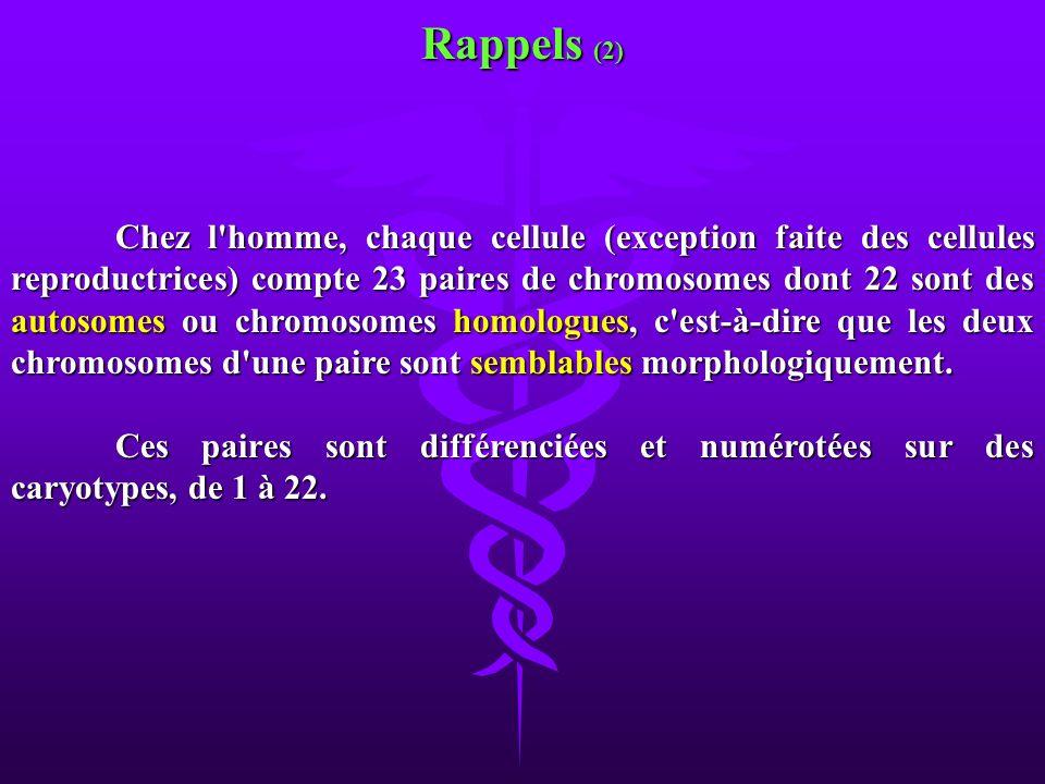 Rappels (2)