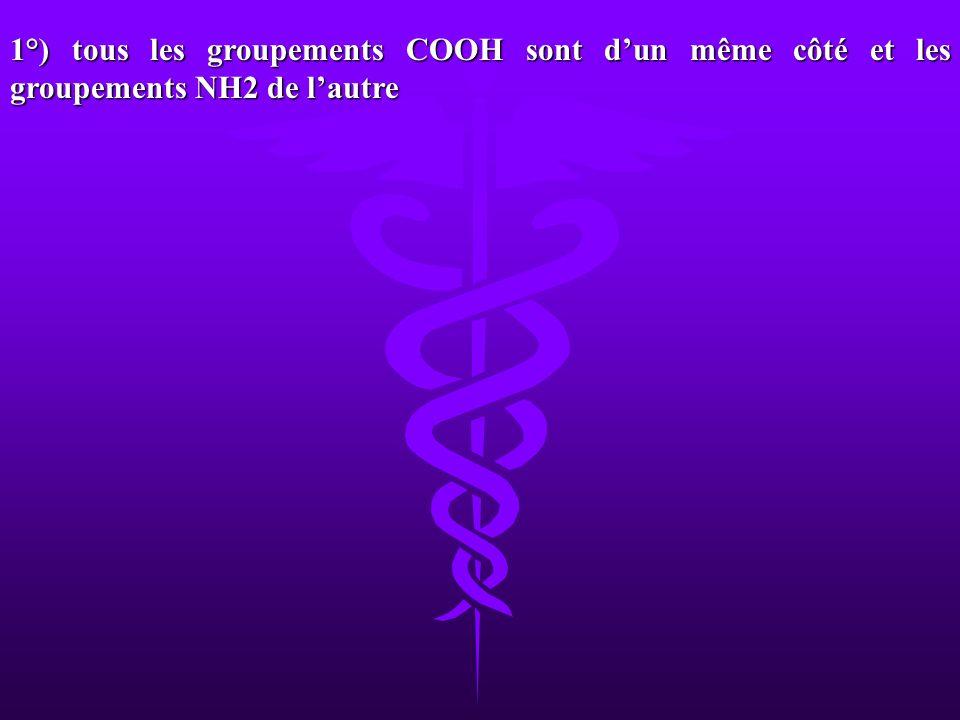 1°) tous les groupements COOH sont d'un même côté et les groupements NH2 de l'autre