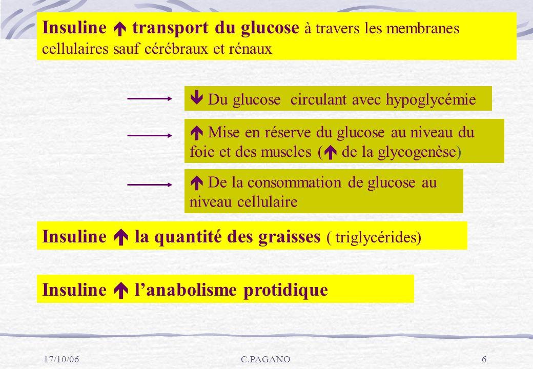 Insuline  la quantité des graisses ( triglycérides)