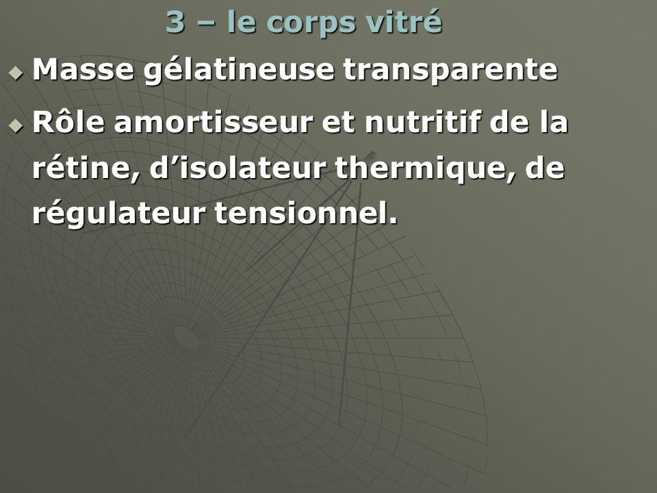 Masse gélatineuse transparente